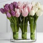 Super ideje: Popestrite svoj dom z rožami