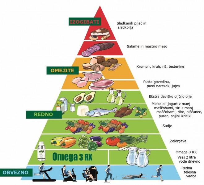 Prehranjevalna piramida Zona