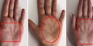oblik-dlana