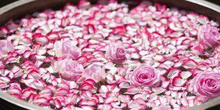 rožna voda 1